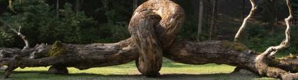 """evento Convegno """"Architettura tra Natura e Sostenibilità"""" 2"""
